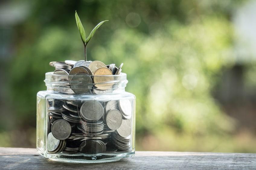 roślina rośnie z monet
